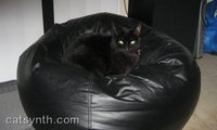 Luna_beanbag_oct073