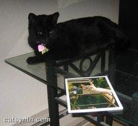 Luna_bday_card_2007